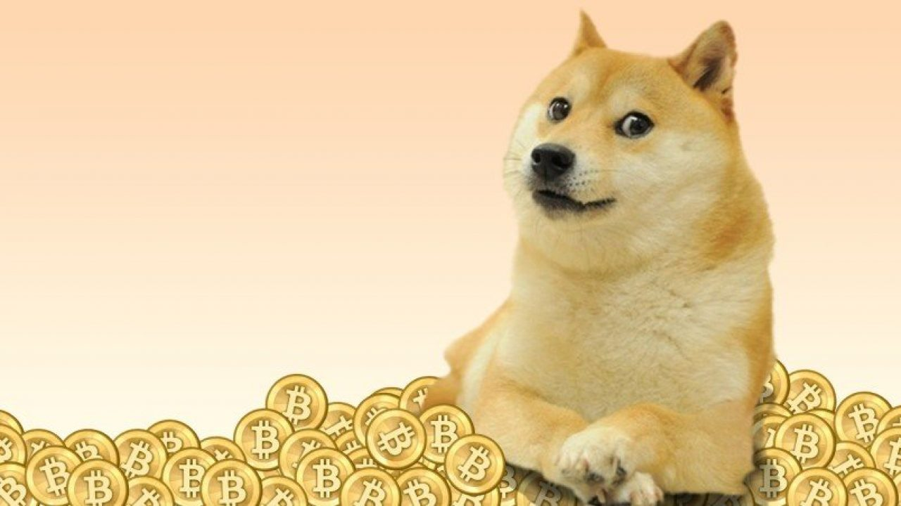 DOGE Price Prediction: Dogecoin slated for a 1000% price ...